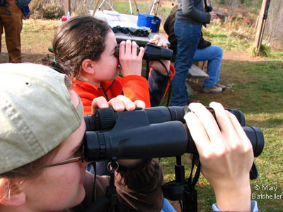 Two pairs of binoculars...but still no raptors! - photo by Mary Batcheller