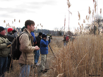 Checking out the waterfowl, photo by Carena Pooth