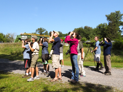 Birding at Mays Point Pool - Photo by Carena Pooth